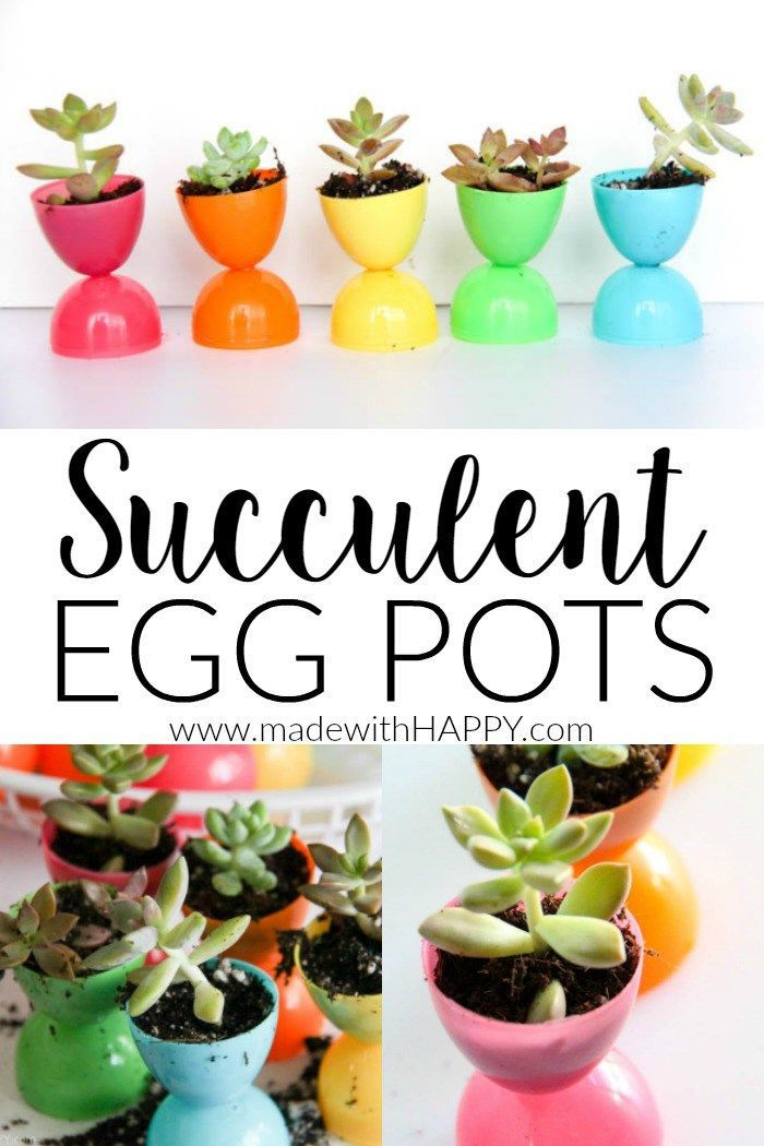 Plastic Easter Egg Pots | Succulent Egg Pots | Flowers in Easter Eggs | Easter Decorations | Easter Table Settings | Rainbow Easter | http://www.madewithHAPPY.com
