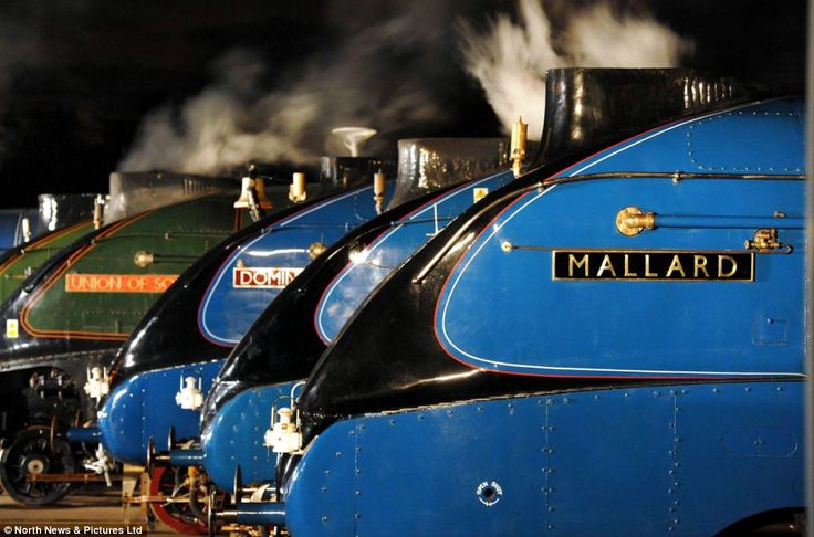 The 'Great Gathering': The six remaining A4 class locomotives, Sir Nigel Gresley, Dwight D Eisenhower, Union of South Africa, Bittern, Malla...