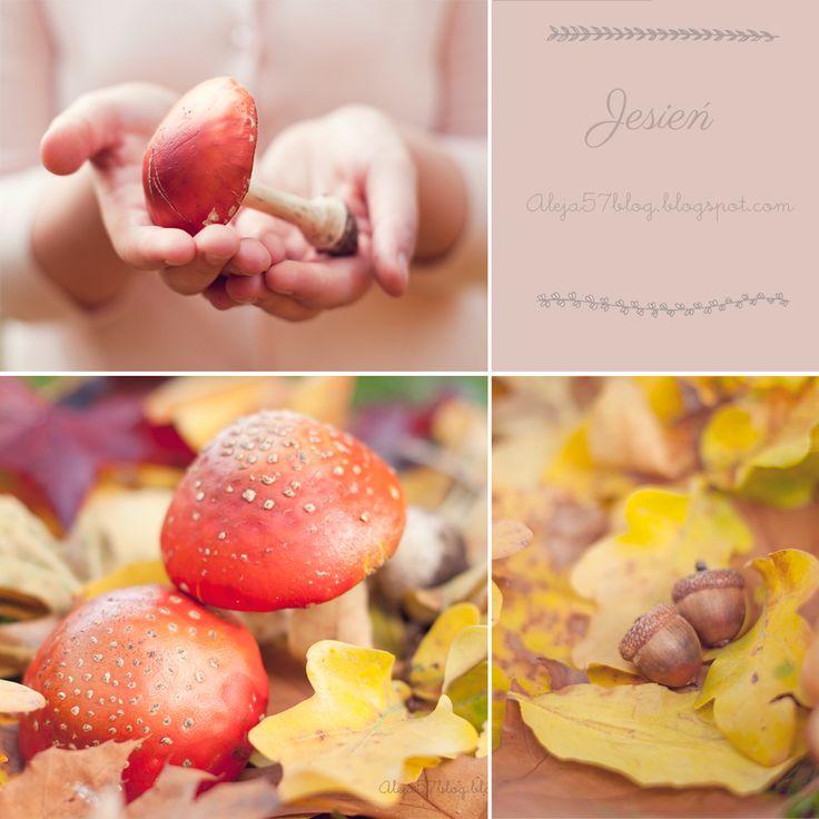 aleja57blog.blogspot.com
