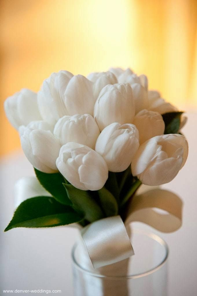 "flowersgardenlove: "" white tulip bouquet Beautiful gorgeous pretty flowers """