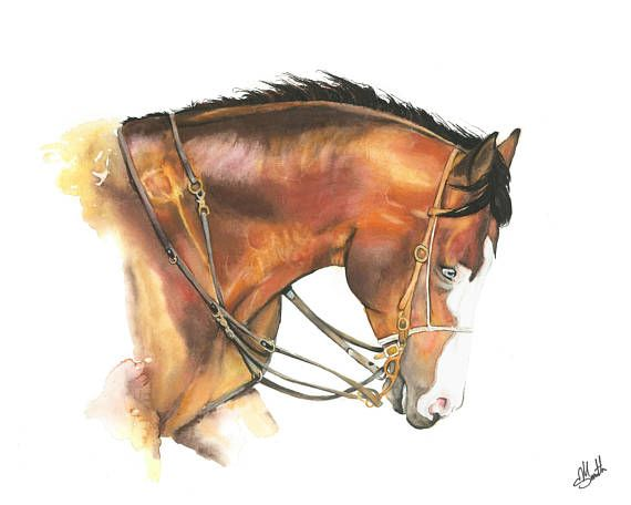 Watercolor Horse Print Abstract horse Cantering horse