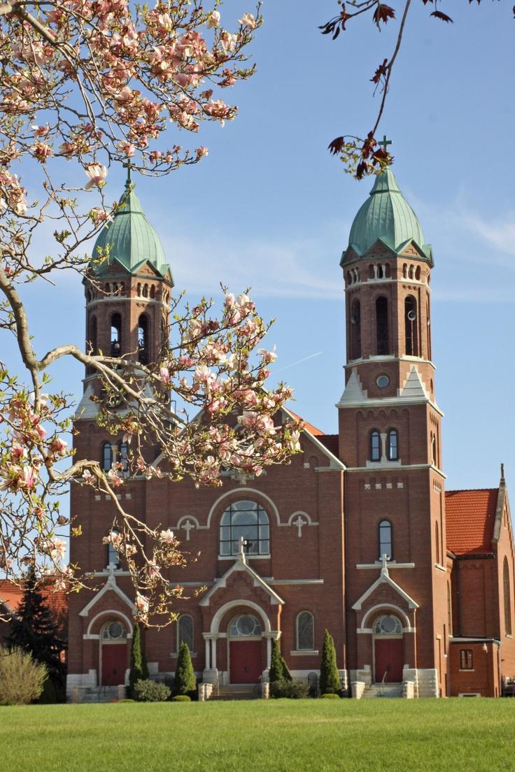 Best 25+ Saint joseph college ideas on Pinterest | St ...