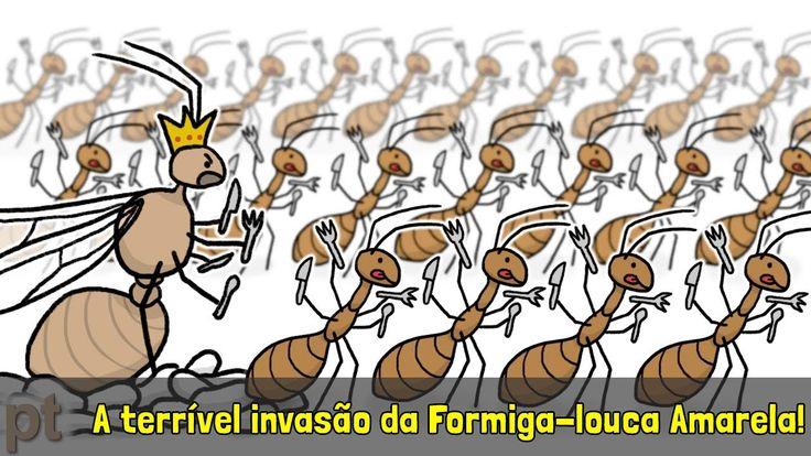 A terrível invasão da Formiga-louca Amarela! | Minuto da Terra