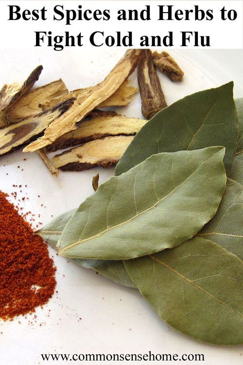 Best Herbs and Spices for Cold and Flu – Plus a Secret Weapon: How herbs, spices, traditional remedies and your kitchen sink can help boost your immune system and protect you from cold and flu.