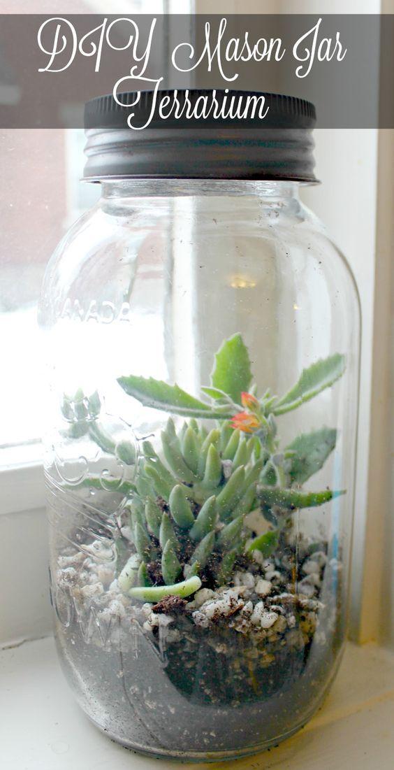 One mason jar, a handful of potting soil and some small houseplants make a diy mason jar terrarium to brighten your windowsill all winter long.: