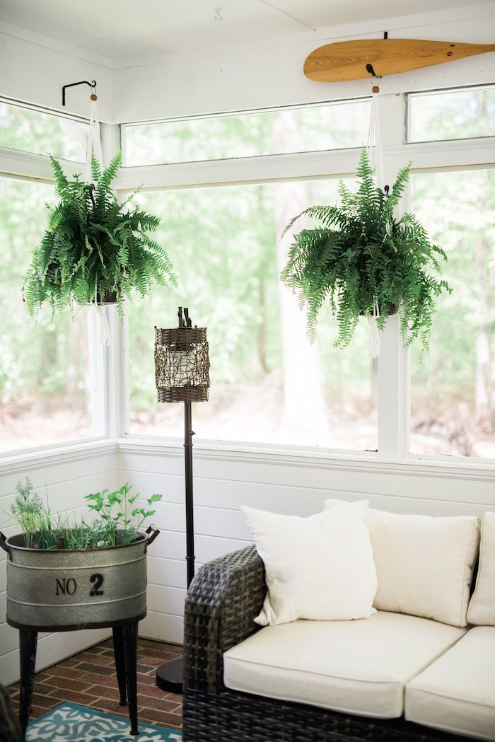I share this because I believe in the magic of boston ferns and because I think you'd like that no. 2 planter there.
