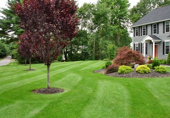 We take up landscaping tasks from scratch and also make up the leveling; which could be conditioned to provide the resonant water concepts, fountains or the grassy lawns. More information - http://vegaslandscaper.com/landscape-maintenance-services-las-vegas/