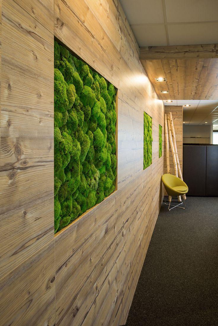 Greenery – Moos in Kombination mit Holz verleiht einen natürlichen und modernen Touch. In diesem Fall wirkt die Verbindung mit dem Trend Nature Dekor Montana Eiche von Febrü besonders harmonisch.