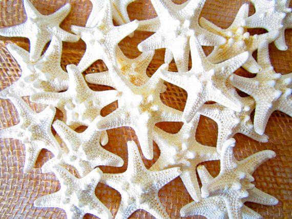 "1-2"" Knobby Starfish-Beach Wedding Decor-Knobby Starfish Bulk-Beach Wedding Favors-White Knobby Starfish-Craft Supplies-Beach Home Decor by MermaidCoveGiftShop on Etsy https://www.etsy.com/listing/233431024/1-2-knobby-starfish-beach-wedding-decor"