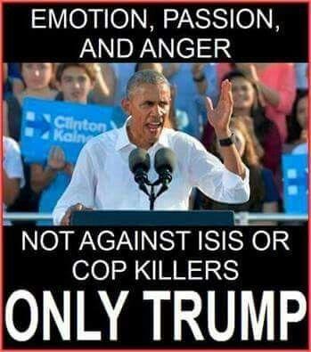 Stupid anti American POS Obastard