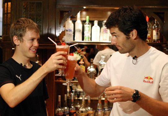 Sebastian Vettel and Mark Webber, F1 drivers