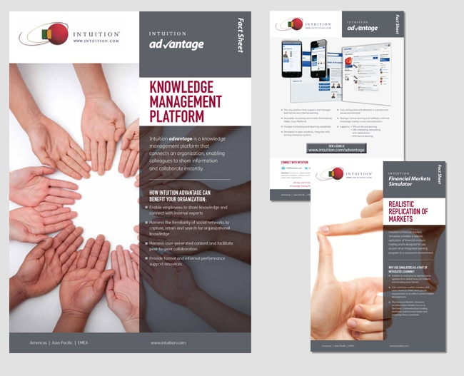 Brochure for print and electronic distribution for Intuition Publishing
