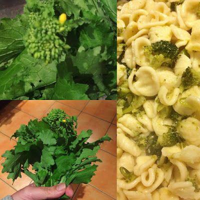 Alessandra Zecchini: Orecchiette con cime di rapa (o friarielli) e broccoli
