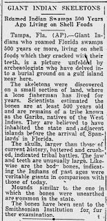 Giant Human Skeletons Unearthed in Tampa Bay, Florida. Bartram's travels describes large pyramids w several other types of buildings and large boulevards that he found in jungles of Florida. He described many beautiful very large trees also