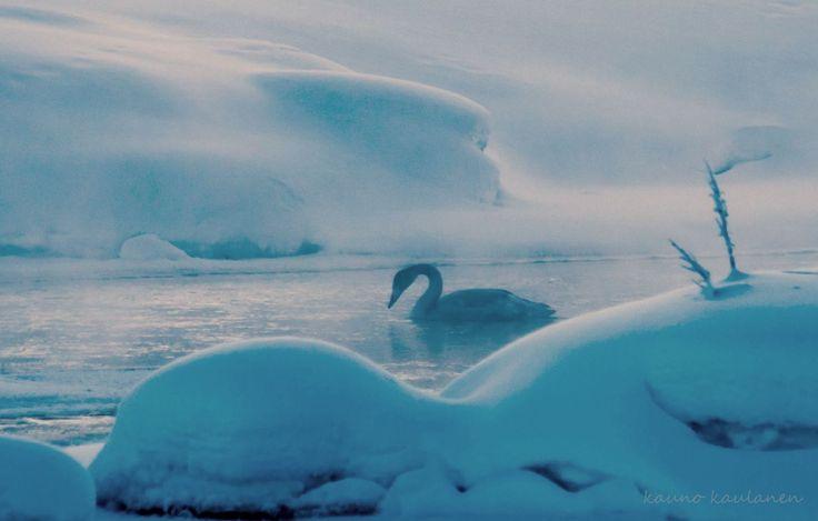 Äkäslompolo, Laponie, en janvier