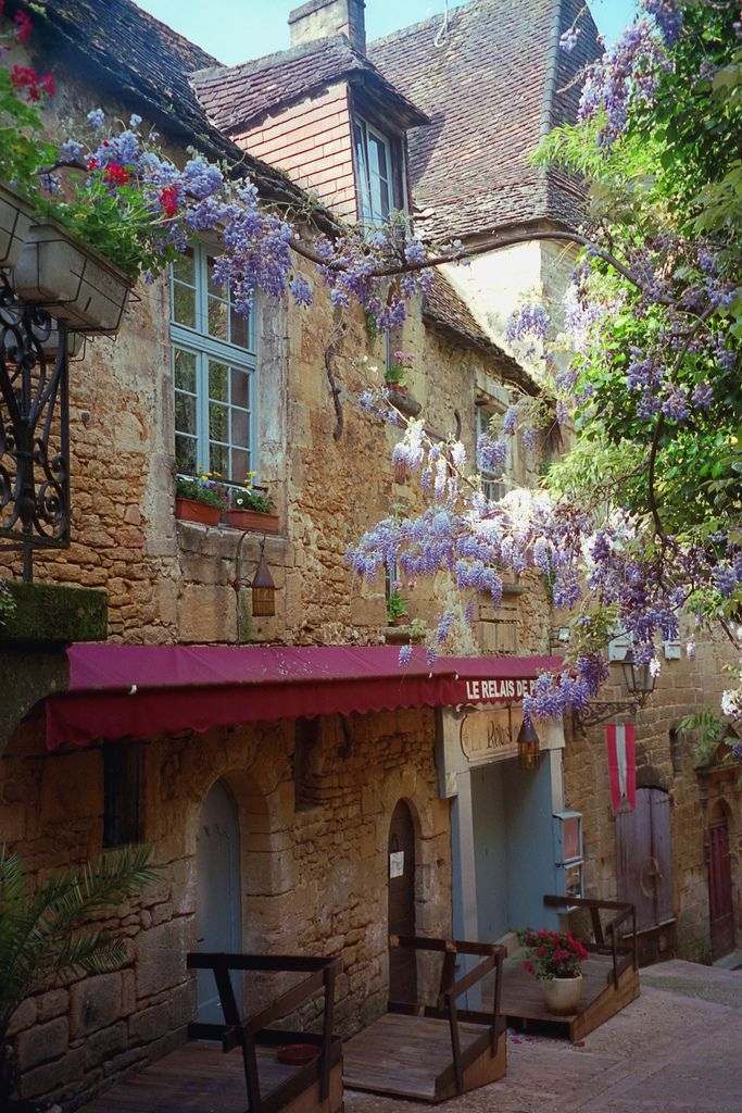 Sarlat France.  The flowers make this so attractive.  As does the history infused in these old buildings.