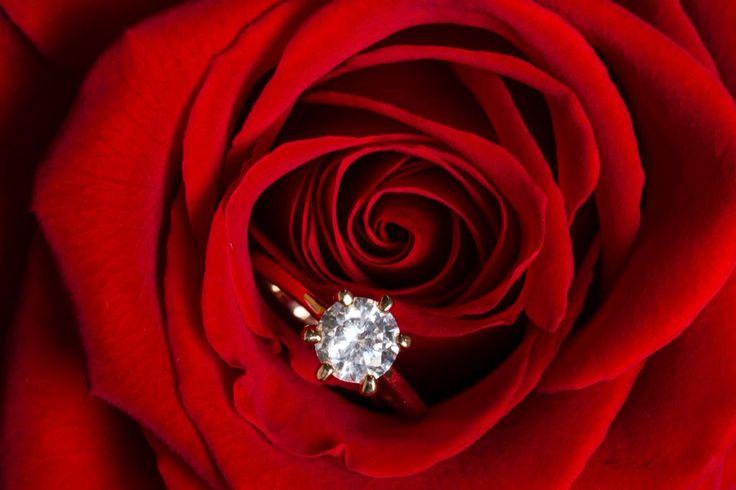 Was ist eine #Diamantbestattung? http://www.xn--gerd-mller-feb.com/bestattungsformen-bestattungsarten/diamantbestattunggerd-müller.com/bestattungsfor…