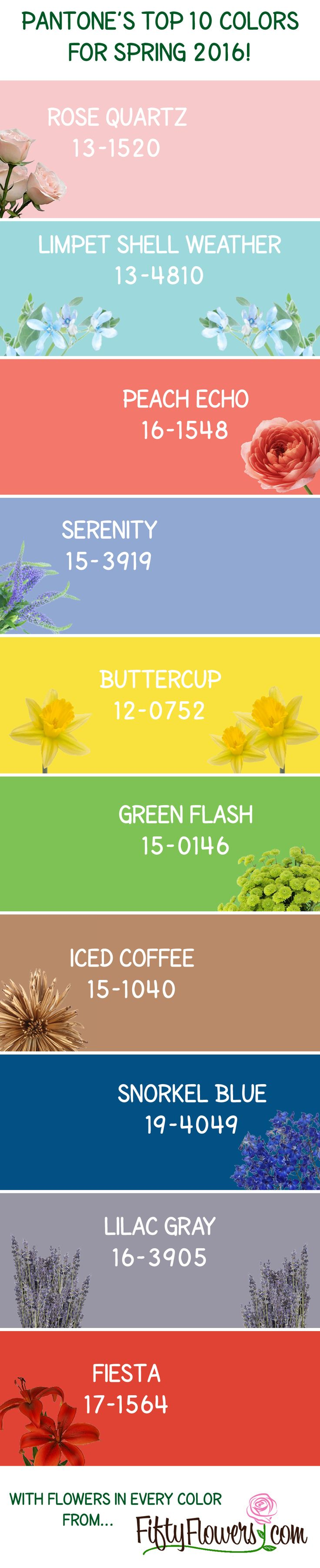 Pantone's Top 10 Colors for Spring 2016 with Wholesale Flowers in Every Color from FiftyFlowers.com