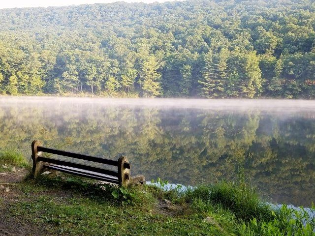 8 Lesser Known State Parks In Pennsylvania That Will Absolutely Amaze You State Parks Day Trips In Pa Pennsylvania Travel