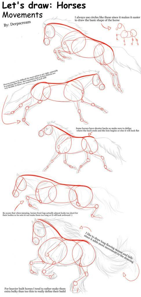 Draw this! Horses