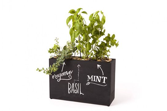30 Made-In-Chicago Gifts For Everyone On Your List #refinery29  http://www.refinery29.com/chicago-gifts#slide14  Modern Sprout Plug-In-Planter Chalk Board, $139, available at Modern Sprout.