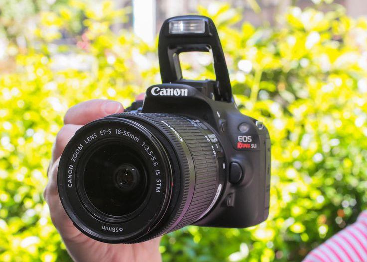 C-NET compares Canon cameras.