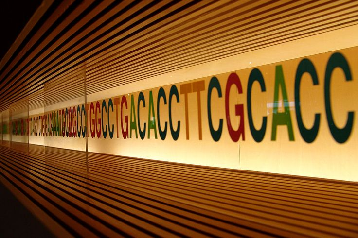 New genome sequencing method helps diagnose a rare genetic condition
