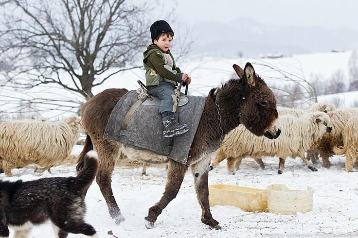 romanian rural life, photo Marian Mocanu