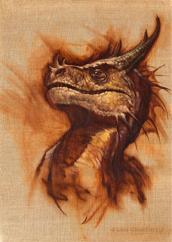 Muddy Colors: Dragon Design in the Natural World. Get in-depth info on the Chinese Zodiac Sign of Dragon @ http://www.buildingbeautifulsouls.com/zodiac-signs/funny-horoscopes/funny-chinese-zodiac/enter-year-dragon/