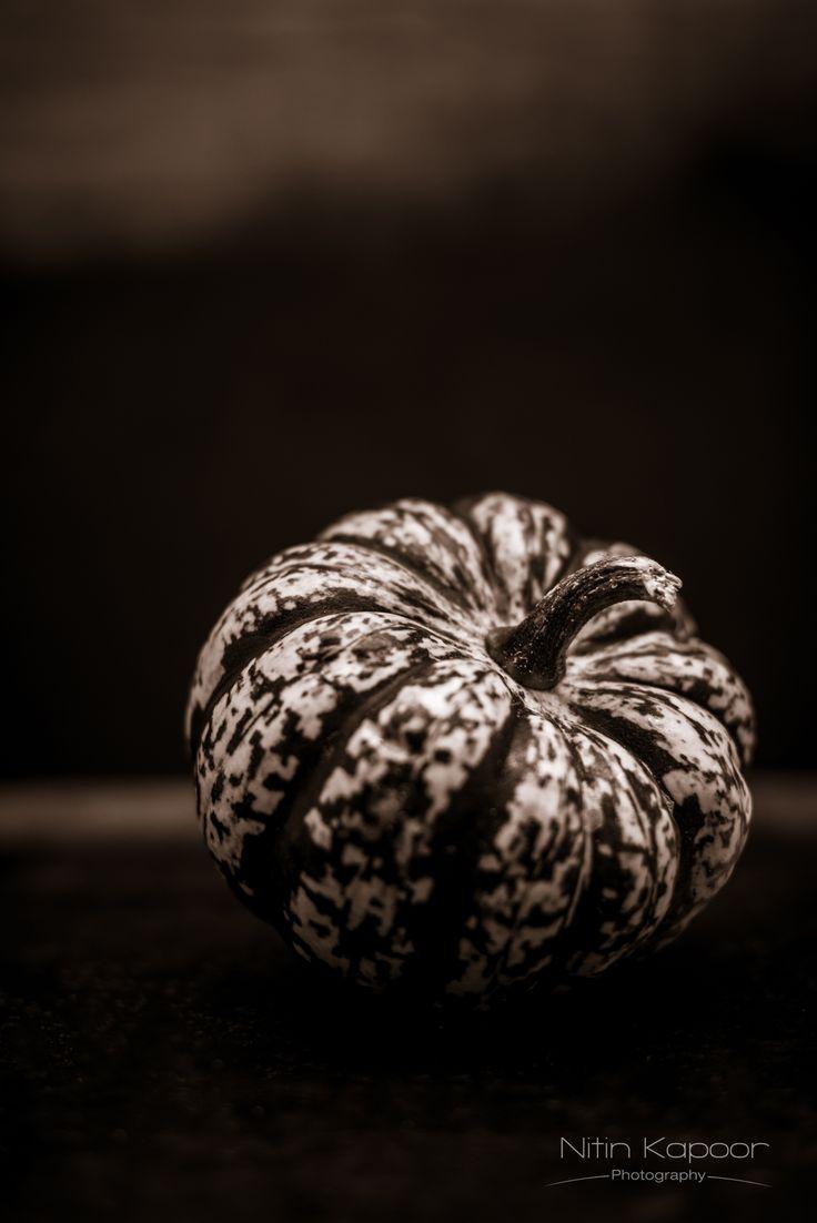 Pumpkin ~ Nitin Kapoor Photography