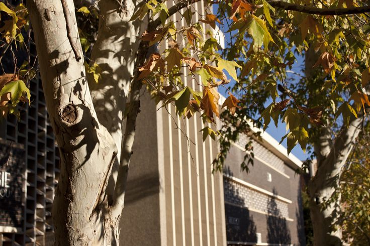 University of the Free State, Bloemfontein Campus, Biology building (Photo: Justus Liebenberg)