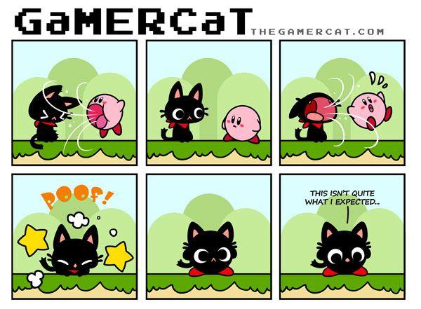 My favorite gamer cat... so cute