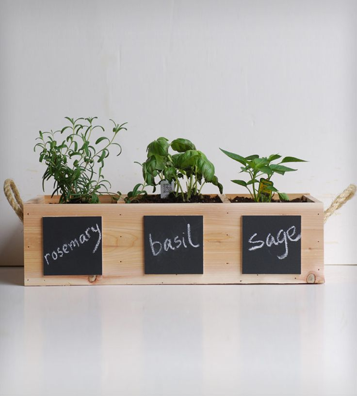 Indoor Herb Garden Kit By Meriwether of Montana. Comes with three pack of organic, heirloom sage, rosemary and basil in high-quality, handmade wooden box. $35.