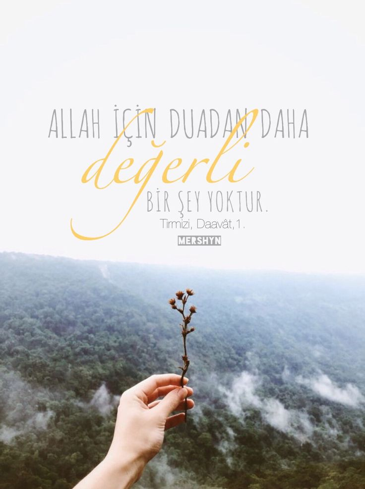 @kuran_ve_hadis_: #müslüman #hadis #kuranıkerim #salavat #dua #islam #Allah #HzMuhammed #islamadavet #iman #ahlak #aşk #sevgi #İstanbul