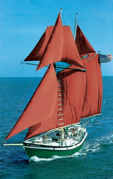 Downeast Rover - Sail, laugh and relax on a peaceful excursion on a 55-foot topsail schooner along the Roanoke Sound. Watch ospreys nesting and dolphins surfacing while you enjoy spectacular scenery. Departing three times daily for 2-hour cruises; daytime and sunset cruises. Private charters available for up to 27 passengers.