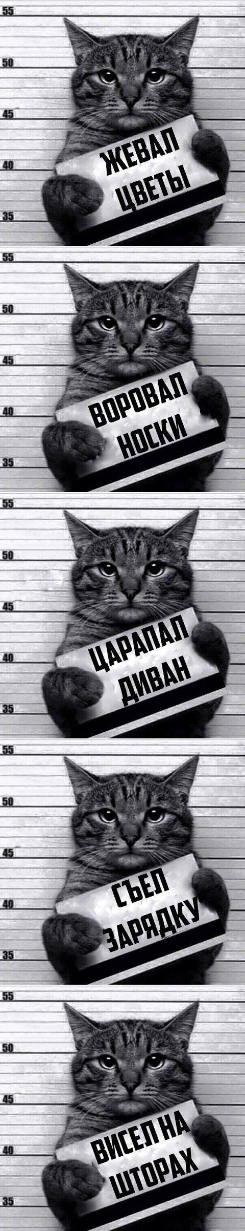 Рецидивист))