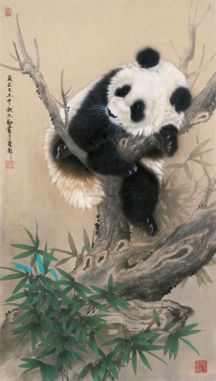 Une légende chinoise populaire raconte qu'autrefois, les pandas étaient complètement blancs, mais, qu'un jour, quand la plus jeune de quatre sœurs mourut, les autres trempèrent les mains dans de la cendre en signe de deuil. En pleurant, ils se frottèrent les yeux pour essuyer leurs larmes, se consolèrent en entourant leurs bras autour d'eux et se bouchèrent les oreilles pour ne pas entendre les pleurs. La légende veut que ces taches de cendre soient restées sur leur fourrure.