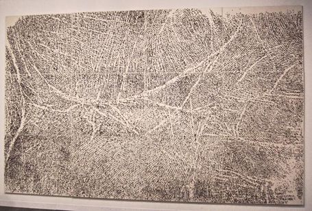 Giuseppe Penone acacia thorns, exposition Musée de Grenoble 22/11/14 - 22/02/15.