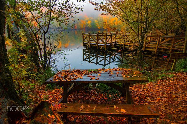 Enough to remember - Enough to remember- autumn #Yedigöller #Bolu #Türkiye