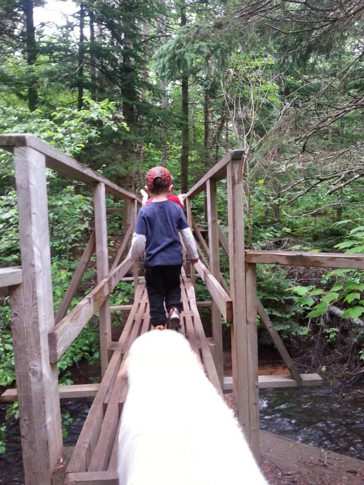 Hiking PEI Breadalbane Nature Trail. #hiking #familyvacation #travelCanada