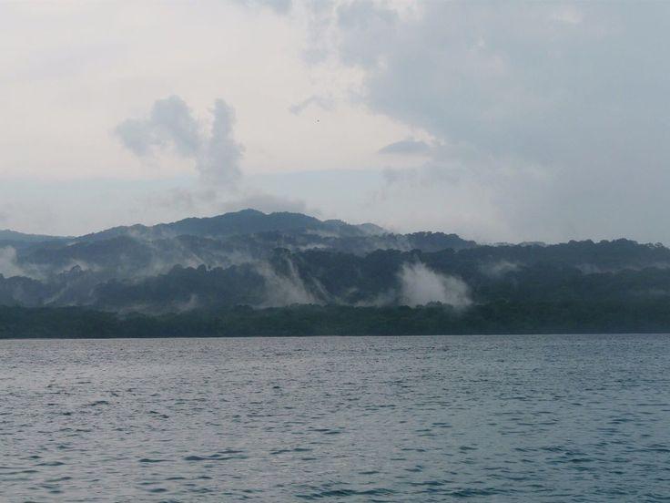 Only at Ujung Kulon National Park!