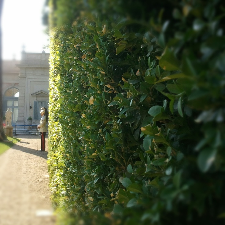 #Rome at Quirinale's garden