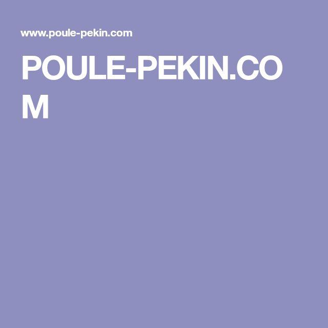 POULE-PEKIN.COM