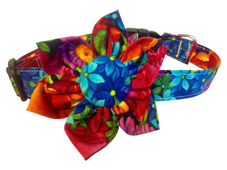 SPIFFY POOCHES Tropical Bright Flowers Blossom Flower Dog Puppy Collar Clothes  #SPIFFYPOOCHES