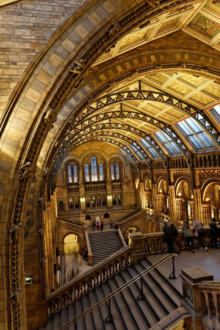 Natural History Museum - London a great place to spend a rainy day.