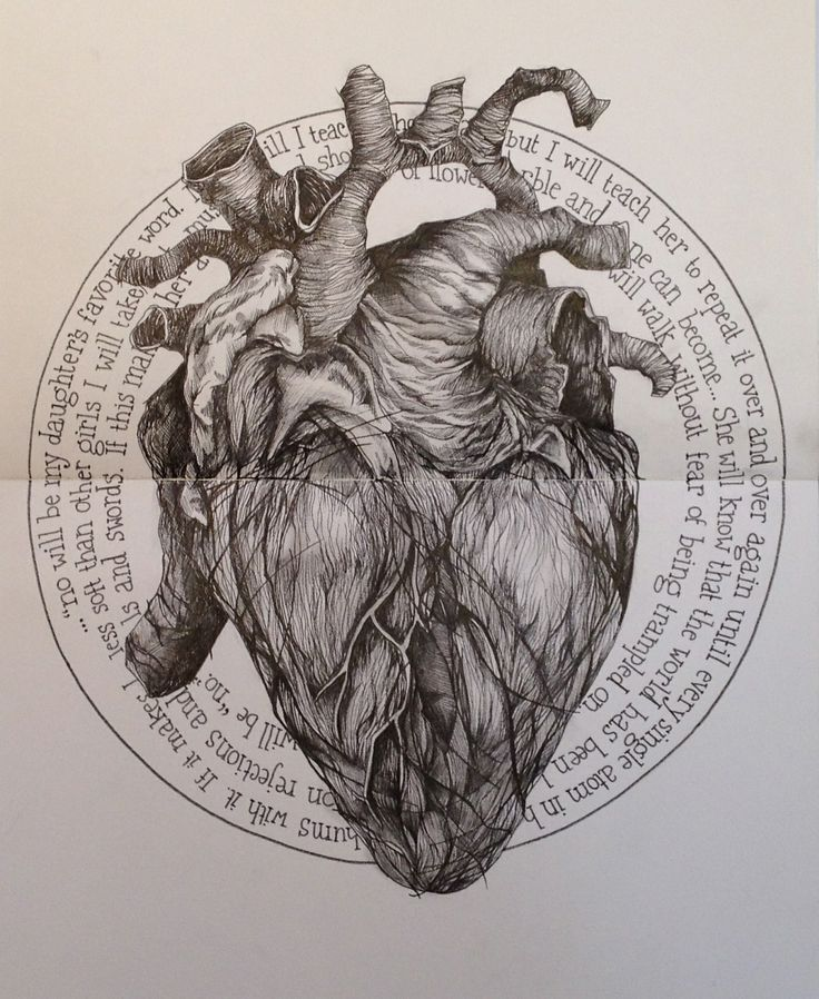 #heart #pen #ink #anatomical