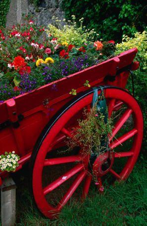 beautiful!!Gardens Ideas, Wagon Wheels, Little Red, Red Flower, Colors, Flower Gardens, Red Wagon, Old Wagon, Yards