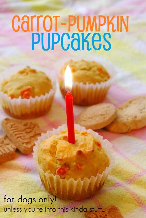 25 best ideas about dog birthday cakes on pinterest doggie on dog birthday cake recipe pumpkin