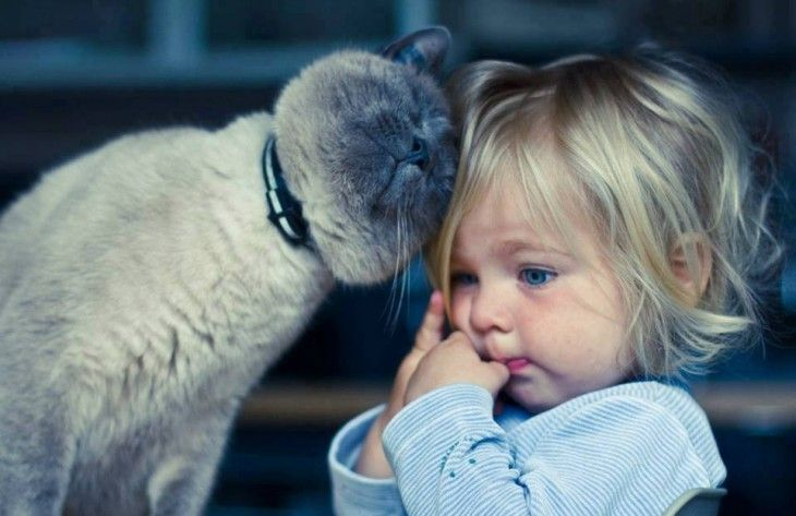 Una niña y su gato juntando sus cabezas