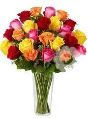 mix růží - květiny online